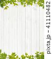 背景-植物-白壁 41110482