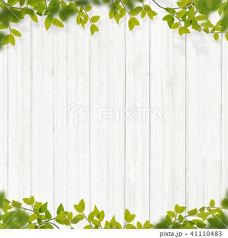 背景-植物-白壁 41110483