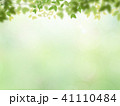 背景 春 新緑のイラスト 41110484