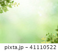 背景 新緑 バックグラウンドのイラスト 41110522