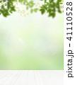 背景-新緑 41110528