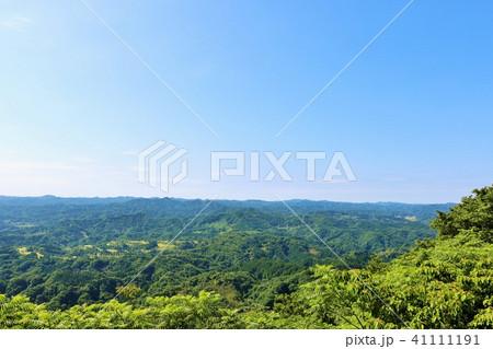 初夏の青空と新緑の風景 41111191