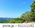 青空 晴れ 森林の写真 41111192