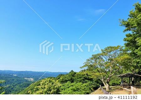 初夏の青空と新緑の風景 41111192