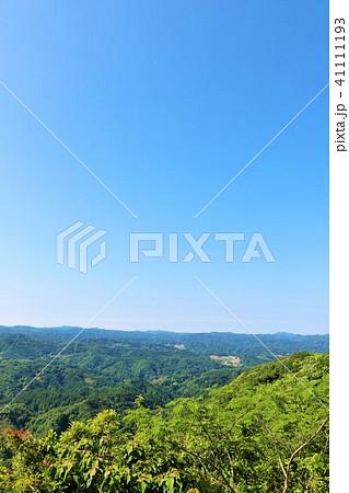 初夏の青空と新緑の風景 41111193