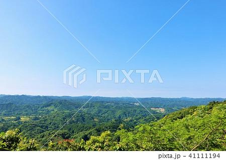 初夏の青空と新緑の風景 41111194
