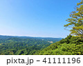 青空 森林 自然の写真 41111196