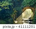 滝 濃溝の滝 光の写真 41111201