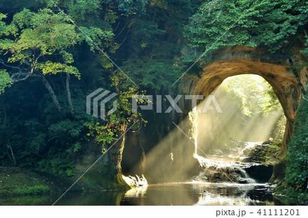 千葉県 濃溝の滝 朝の光 41111201
