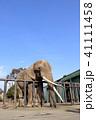 動物園 41111458