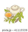 花 ベクトル ハーブのイラスト 41115539
