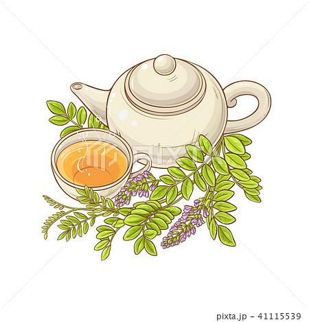 licorice tea illustration 41115539