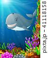 海 くじら クジラのイラスト 41118158