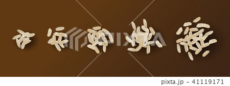Realistic Vector Rice Isolated 41119171