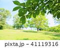 初夏 新緑 公園の写真 41119316