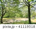 初夏 新緑 公園の写真 41119318