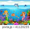 Cartoon mermaid under the sea  41120235