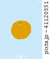 梨 果物 フルーツのイラスト 41120351