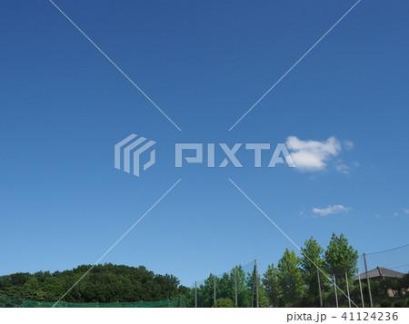 緑と青空と白い雲 41124236