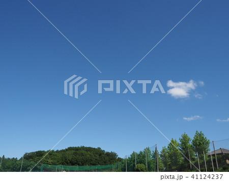 緑と青空と白い雲 41124237