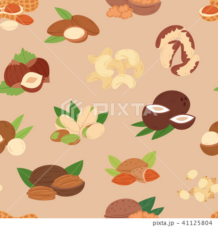 Nut Vector Nutshell Of Hazelnut Or Walnut And Almond Nuts Set