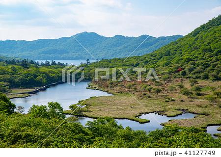 新緑とレンゲツツジ咲く覚満淵 6月の赤城山 俯瞰 c 中望遠 41127749