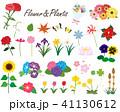 花と植物1 41130612