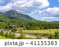 初夏 白樺高原 新緑の写真 41135363