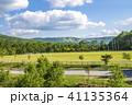 初夏 白樺高原 新緑の写真 41135364