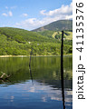 風景 枯れ木 山の写真 41135376
