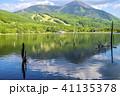 風景 枯れ木 山の写真 41135378