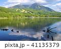 風景 枯れ木 女神湖の写真 41135379