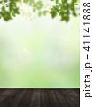 背景-新緑-ウッドデッキ 41141888