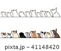 横を向いて見上げる猫たちのボーダーセット 41148420