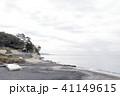 水辺風景(神奈川県、鎌倉市、冬) 41149615
