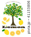 レモン レモンの木 木のイラスト 41153806