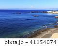水辺風景(神奈川県、立石公園、冬) 41154074