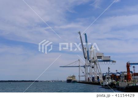 清水港のキリン 41154429