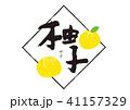 筆文字 果物 柚子のイラスト 41157329