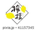 筆文字 果物 檸檬のイラスト 41157345