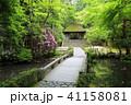 京都 初夏の法然院 41158081