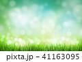 背景 草 緑の写真 41163095