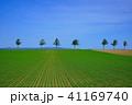 風景 畑 木の写真 41169740