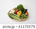 野菜イメージ 41170579