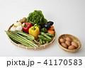野菜イメージ 41170583