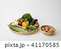 野菜イメージ 41170585