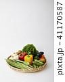 野菜イメージ 41170587
