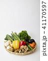 野菜イメージ 41170597