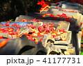 瓦と紅葉の風景(埼玉県川口市) 41177731