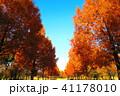 秋の舎人公園(東京都足立区)の風景 41178010